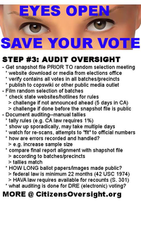 EyesOpen3 AuditOversight.png